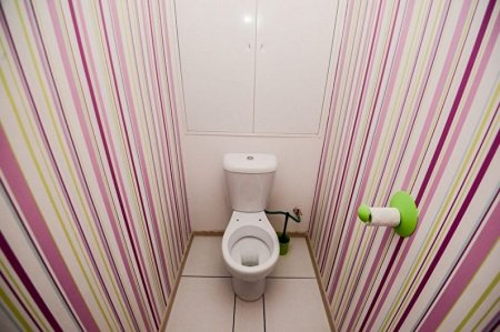 Идеи отделки стен в туалете