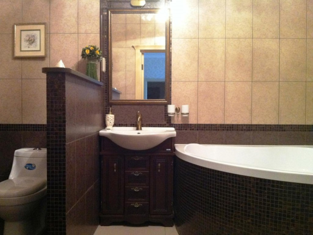 Как сделать из совместной ванны и туалета 381