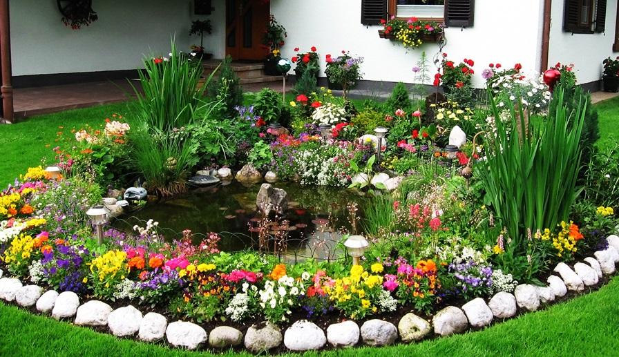 Цветник перед домом своими руками фото
