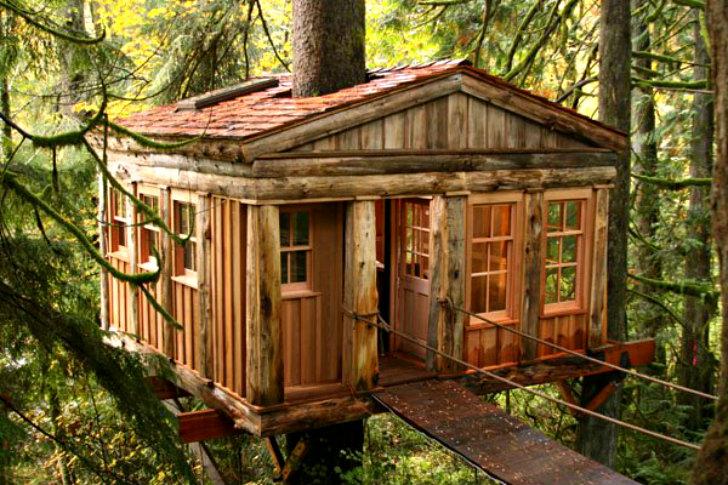 Домики с дерева