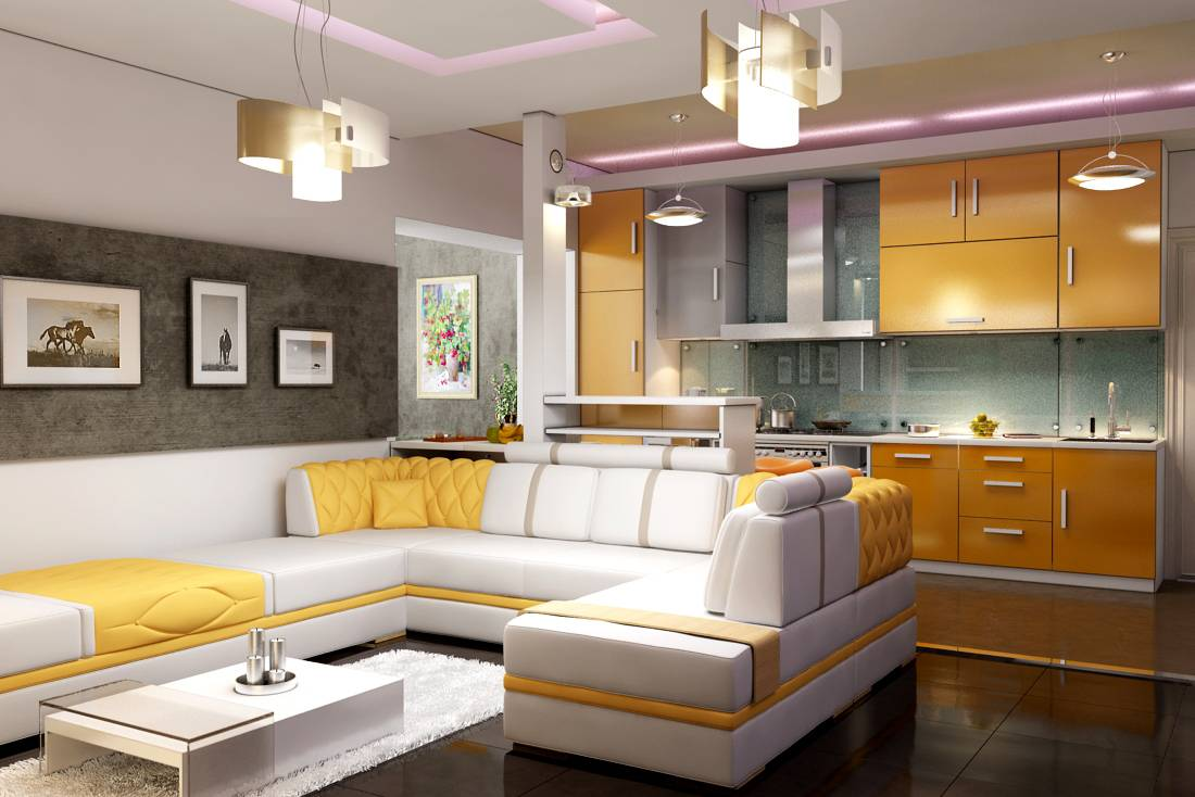 Дизайны и интерьеры кухня студия гостиная