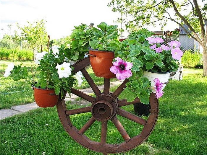 Как оформить свой дачный участок цветами