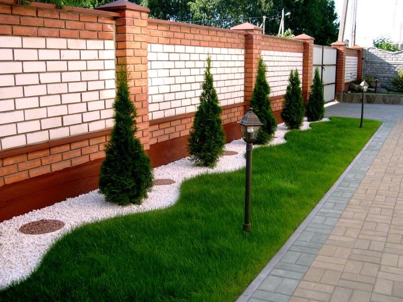 Озеленение двора частного дома своими руками фото