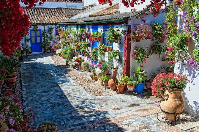 Как украсить красиво двор цветами