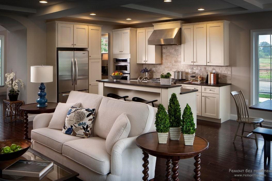 Интерьер кухни совмещенной с гостиной дизайн в частном доме
