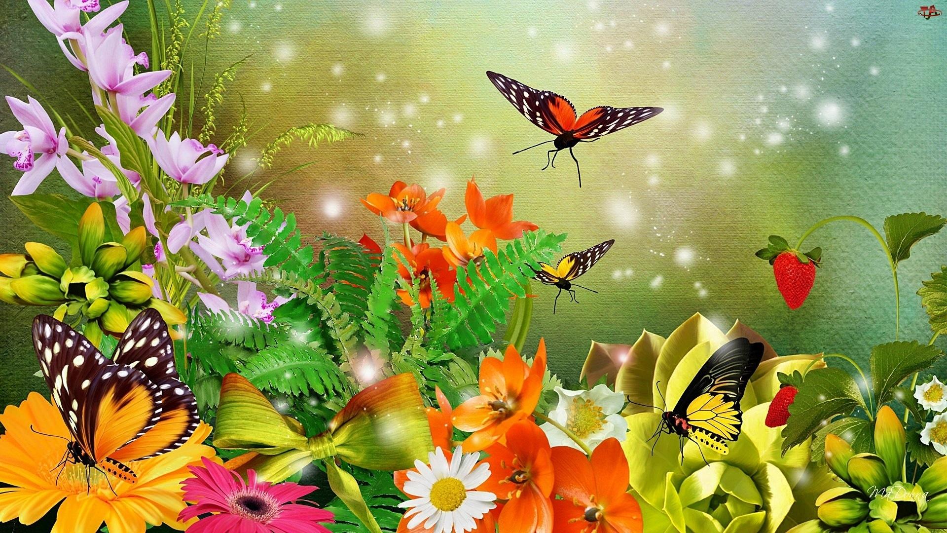 Фото картинки орхидеи