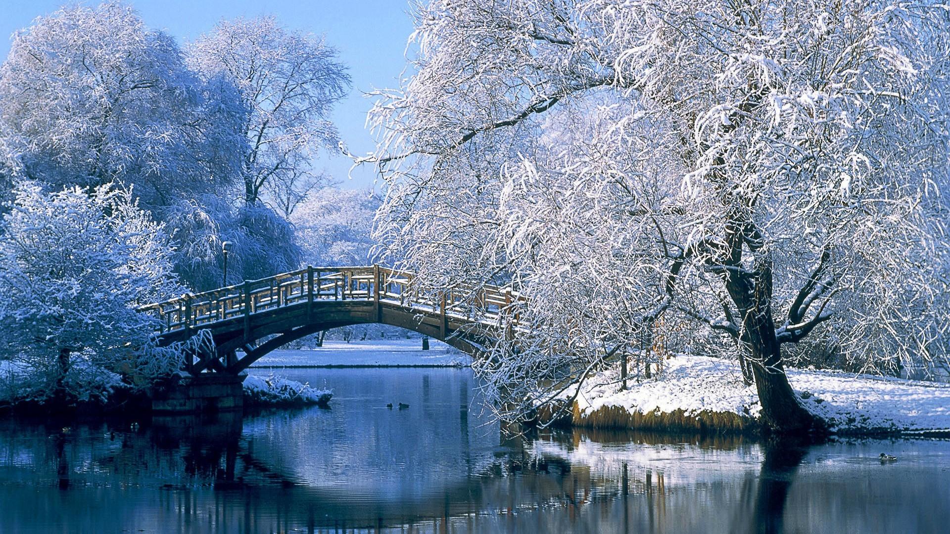 Что одеть с белым платьем зимой